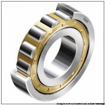 35 mm x 80 mm x 21 mm  NTN NUP307EG1U Single row cylindrical roller bearings