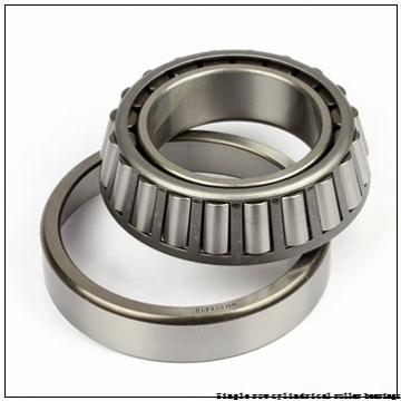 35 mm x 80 mm x 21 mm  NTN NUP307EG1 Single row cylindrical roller bearings