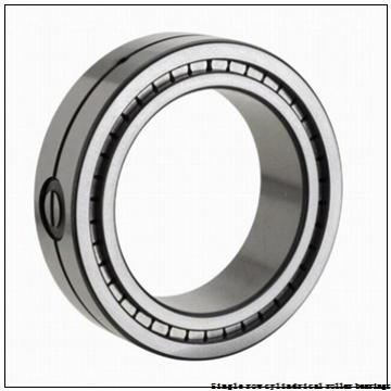 55 mm x 100 mm x 21 mm  NTN NUP211U Single row cylindrical roller bearings