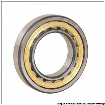 40 mm x 80 mm x 23 mm  NTN NUP2208U Single row cylindrical roller bearings